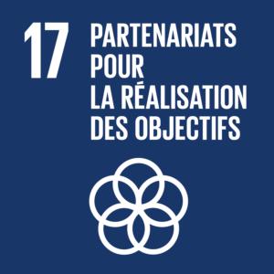 Objectif 17: Partenariats pour la réalisation des objectifs