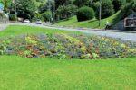 Vevey distribue des légumes bios cultivés dans ses massifs